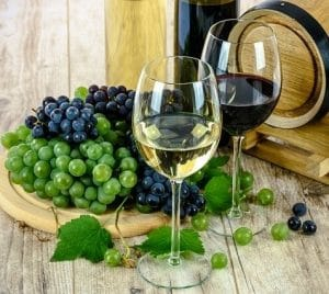 discovering vegan wine